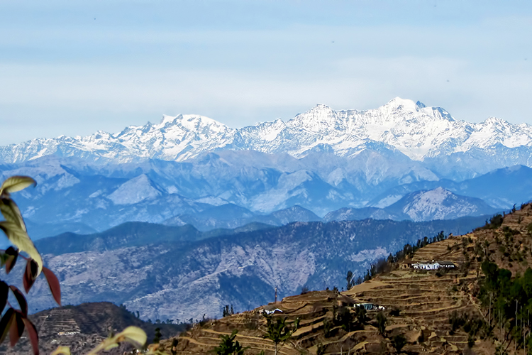 The spectacular view of the snow-clad Himalayas from Kanatal