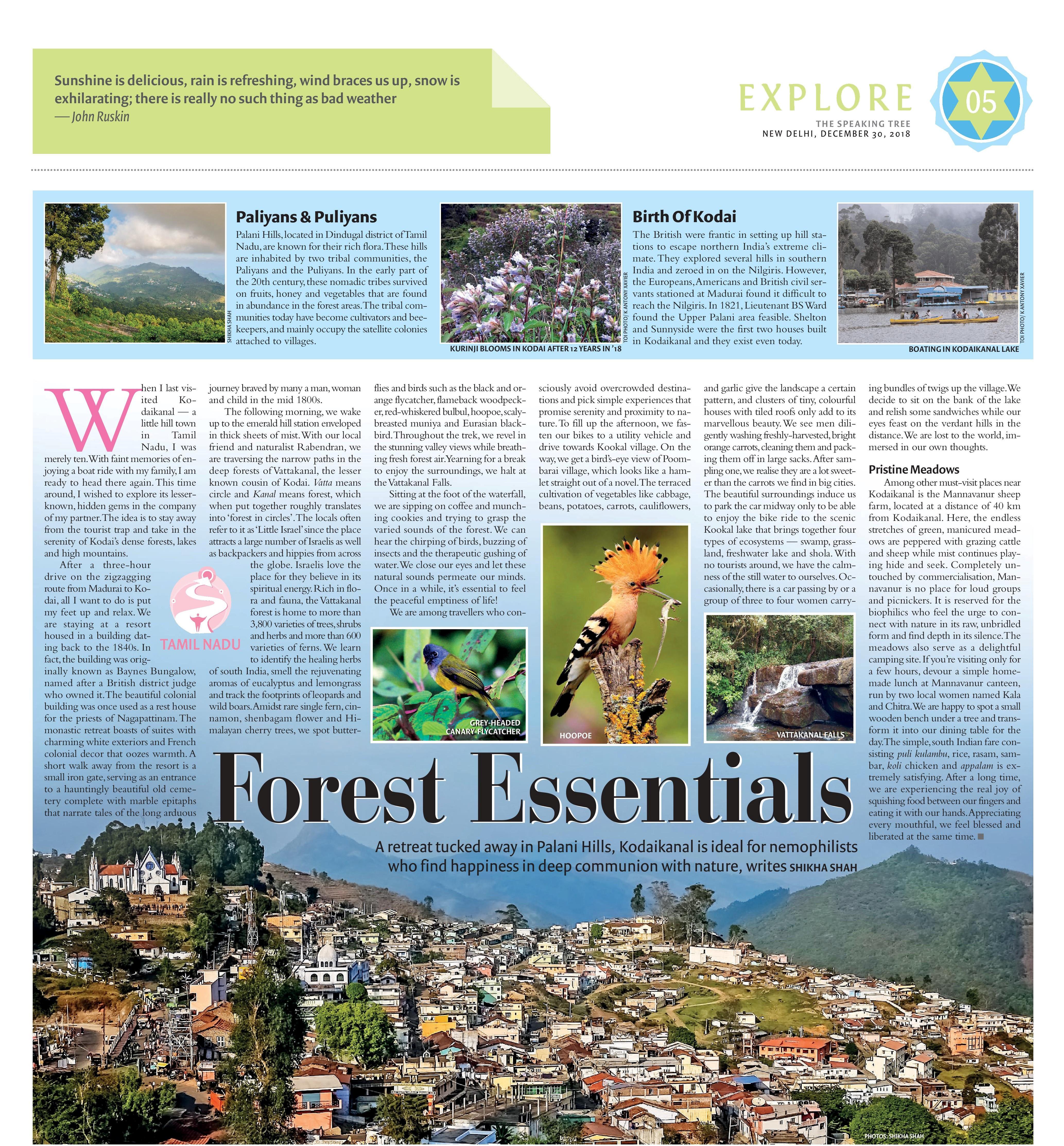 SPEAKING TREE - KODAIKANAL - DECEMBER 30, 2018-page-001