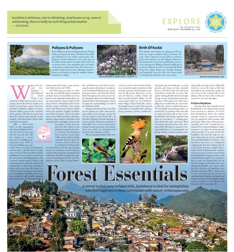 SPEAKING TREE - KODAIKANAL - DECEMBER 30, 2018-page-001