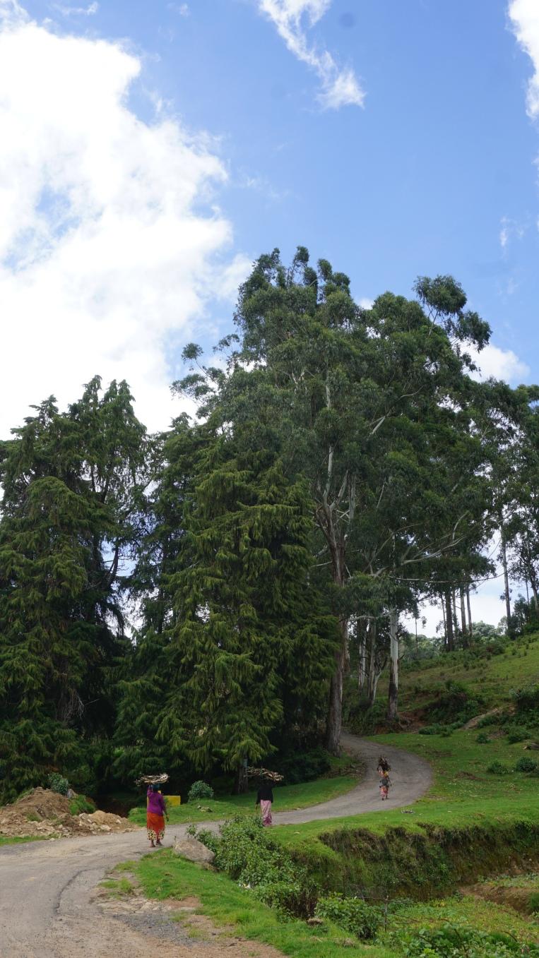 Kookal village