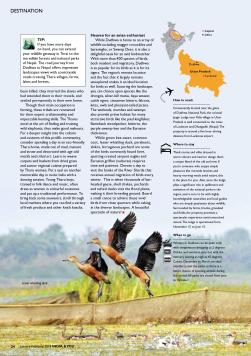 destination - dudhwa(2)- india and you-page-003