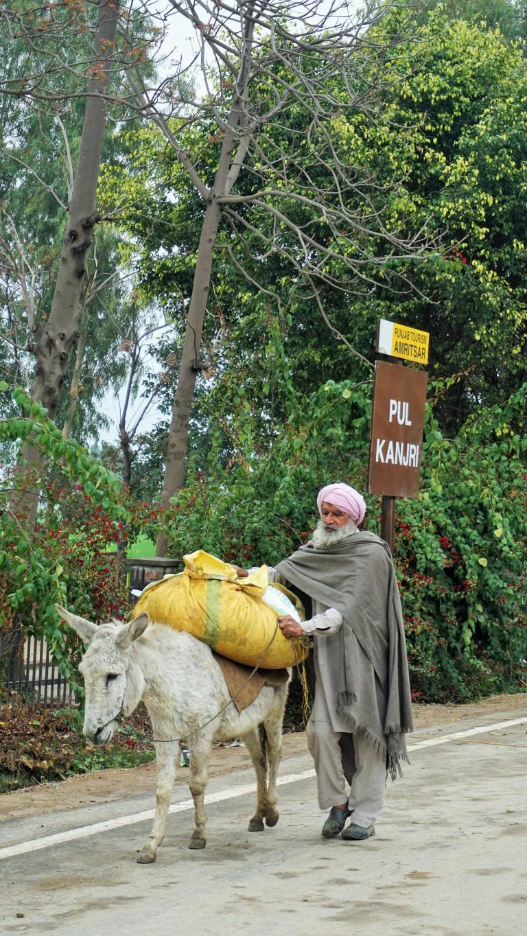 A taste of rural Punjab - A local at Pul Kanjri, Amritsar