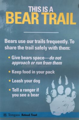 Bear Trail Sign